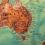 AUSTRALIA: UN MODELLO PER FRENARE L'IMMIGRAZIONE <BR> di Giulio Meotti